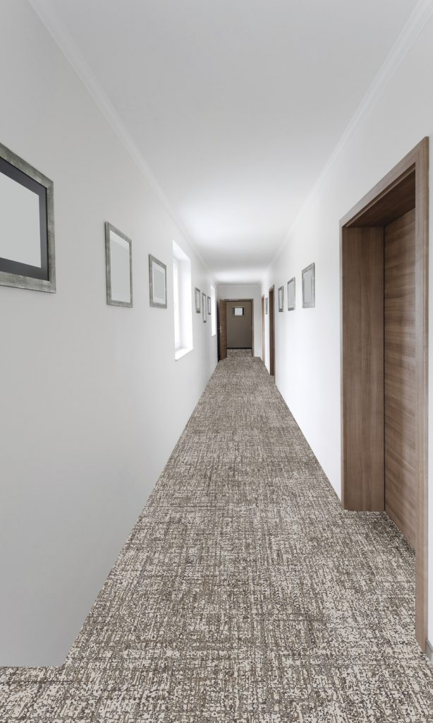 72_dpi_4a3t_roomset_carpet_darius_910_grey_4[1]